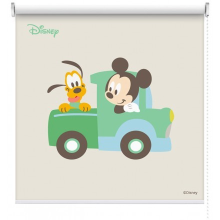 Mickey Mouse  & Pluto