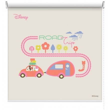 Road trip, Mickey Mouse