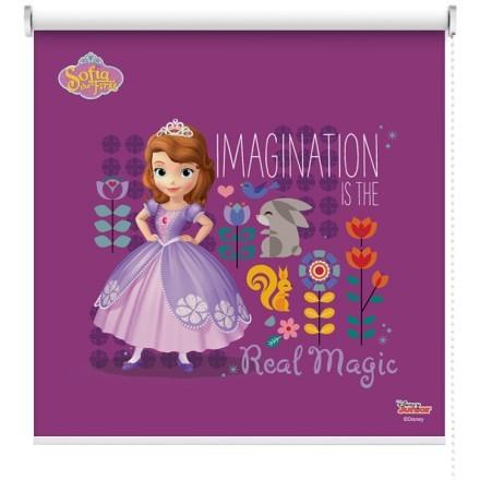 Η φαντασία είναι η αληθινή μαγεία, Σοφία η πριγκίπισσα