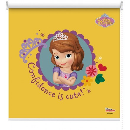 Confidence is cute, Sofia The First