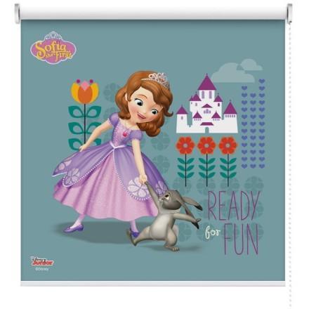 Είσαι έτοιμη για διασκέδαση? Sofia The First