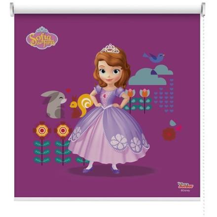 Sofia η πριγκίπισσα στην εξοχή!