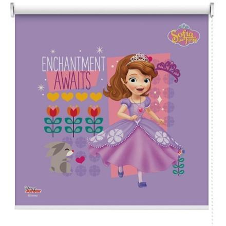 Enchantment awaits, Σοφία η πριγκίπισσα