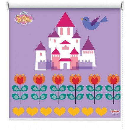 Το κάστρο της Σοφίας της Πριγκίπισσας!