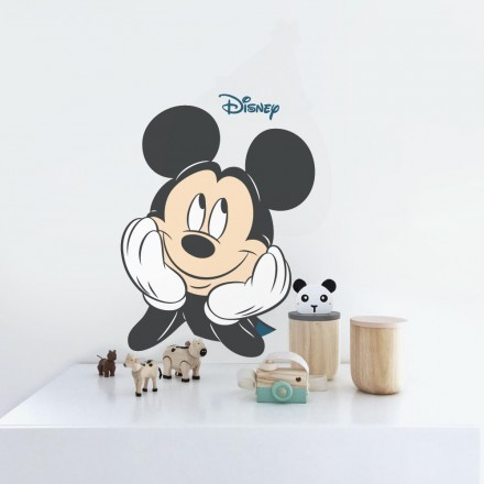 Mickey Mouse !