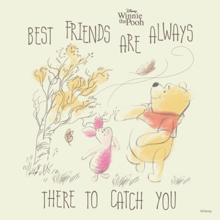 Best friends are always there to catch you, Winnie the Pooh