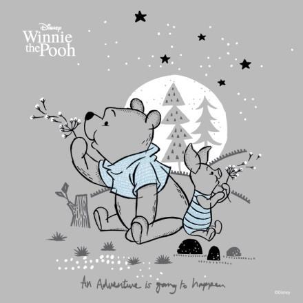 Φεγγαράκι, Winnie The Pooh