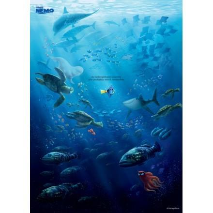 Θάλασσα, Finding Dory