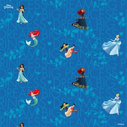 Big dream Princess!