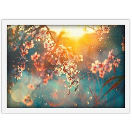 Ηλιοβασίλεμα και Λουλούδια