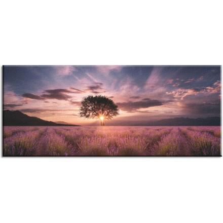 Ηλιοβασίλεμα στην Φύση