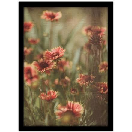 Λουλουδάκια