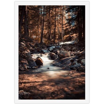 Ρυάκι στο φθινοπωρινό δάσος