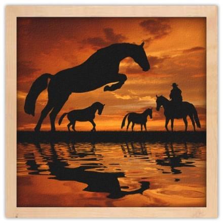 Άλογα στο ηλιοβασίλεμα