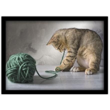 Γατάκι που παίζει