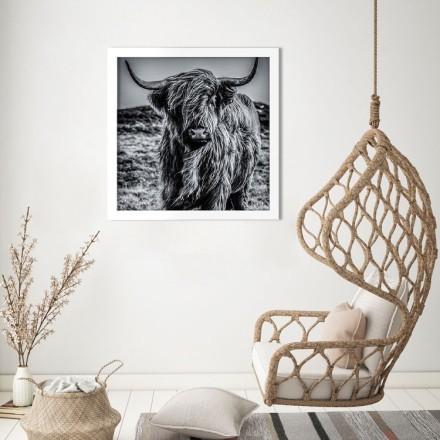 Ταύρος σε ασπρόμαυρο φόντο