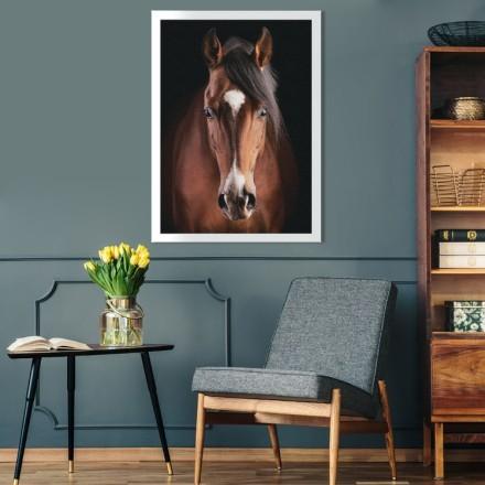 Καφέ όμορφο άλογο