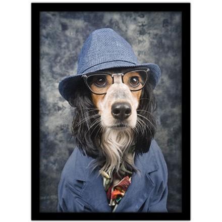 Σκύλος με σακάκι