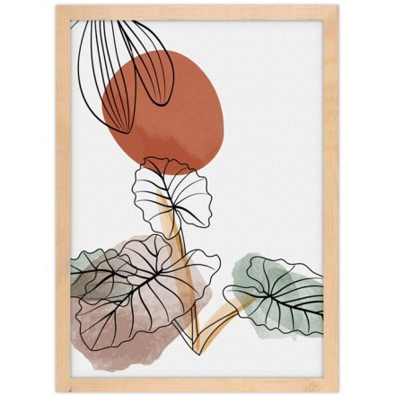 Σχεδιάγραμμα φυτών