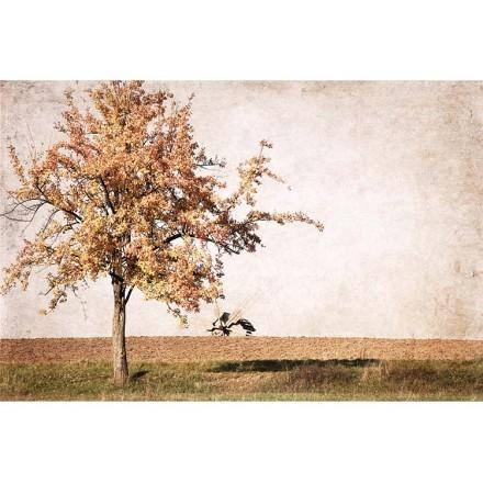Δέντρο μόνο του