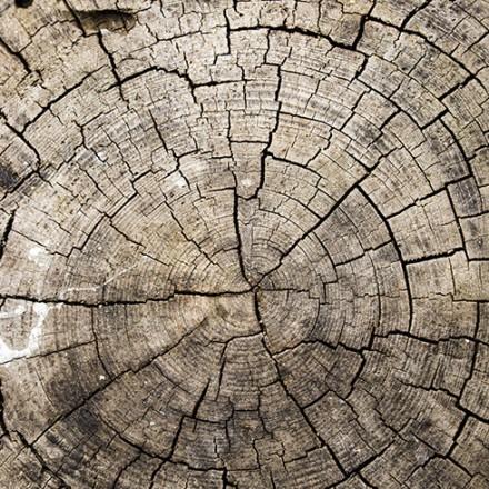 Φόντο ξύλου