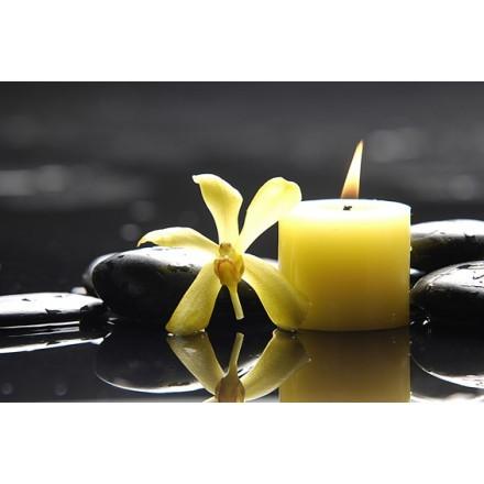 Λουλούδι με κίτρινο κερί