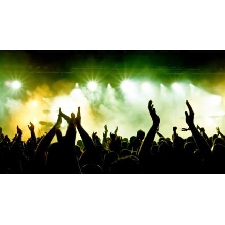 Πλήθος σε συναυλία