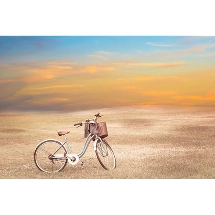 Παλιό ποδήλατο