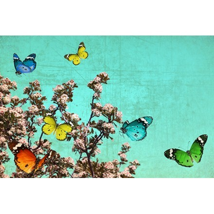 Δέντρα και Πεταλούδες