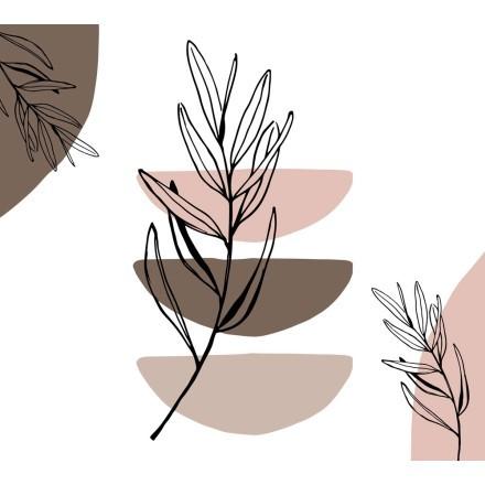 Φύλλο ελιάς και σχήματα