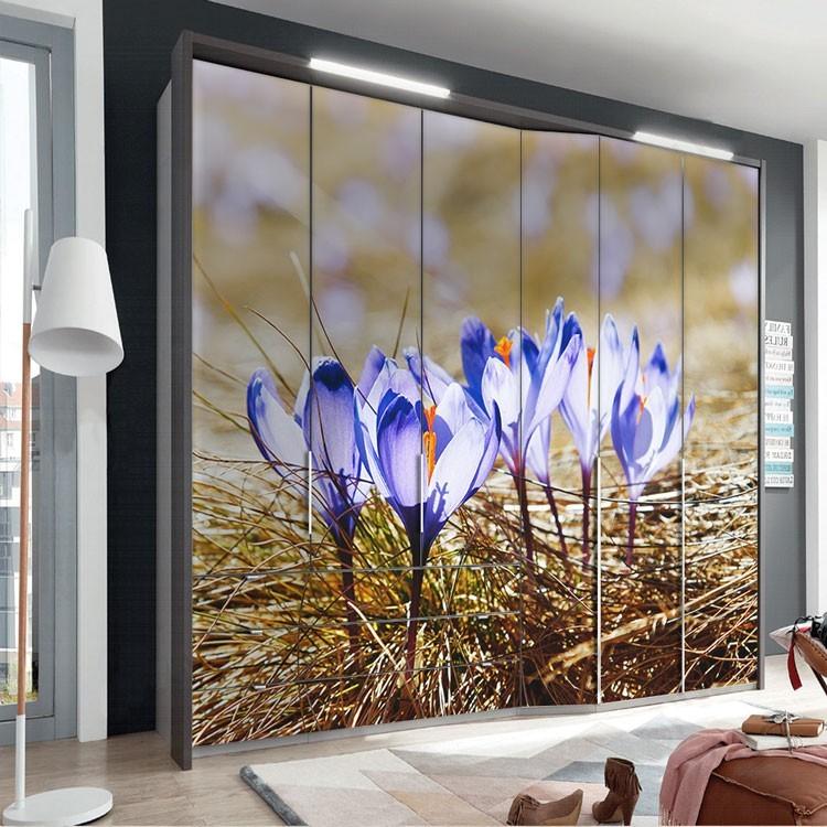 Αυτοκόλλητο Ντουλάπας Ανοιξιάτικα λουλούδια