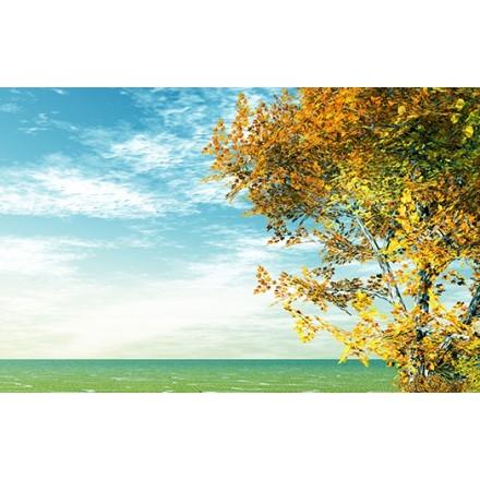 Φθινοπωρινό Ουρανός