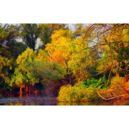 Πολύχρωμο δάσος το φθινόπωρο