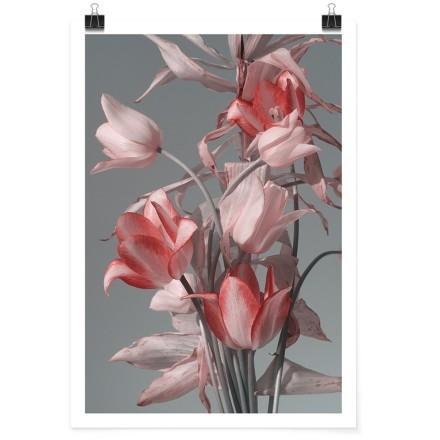 Μπουκέτο με ροζ & κόκκινα λουλούδια
