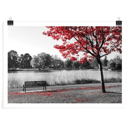 Παγκάκι κάτω από το κόκκινο δέντρο