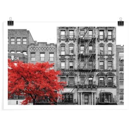 Κόκκινο ανθισμένο δέντρο στη πόλη
