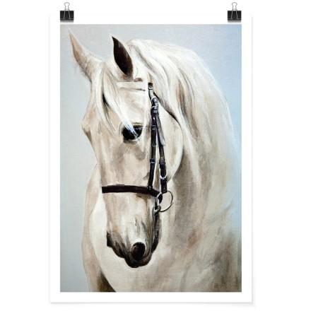 Λευκό άλογο