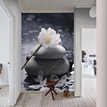 Λουλούδι σε πέτρα