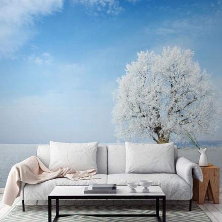 Παγωμένο δέντρο με ουρανό