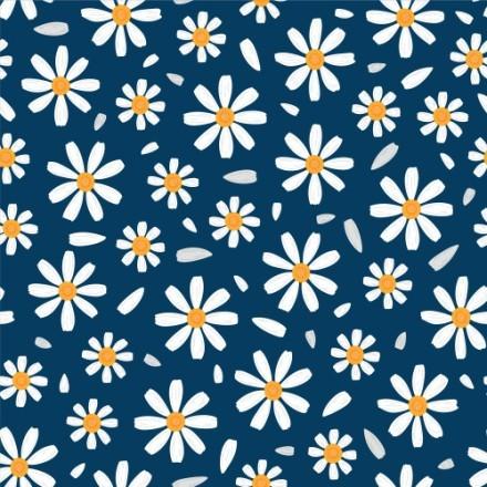 Λουλούδια Μαργαρίτες