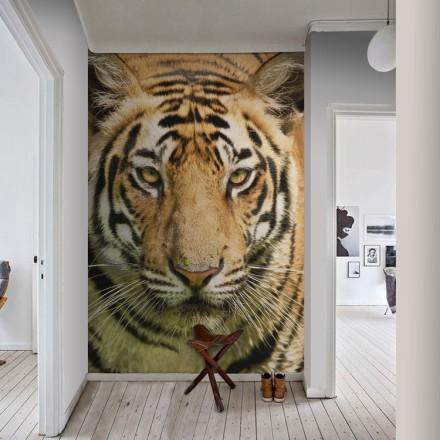 Βασιλική τίγρης της Βεγγάλης