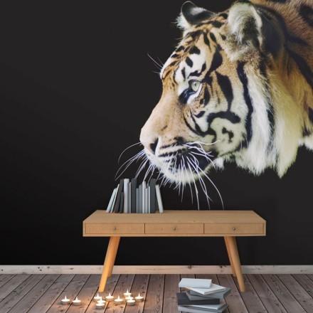 Τίγρη Σουμάτρας