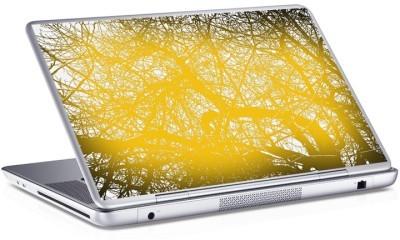Δάσος, Skins sticker, Αυτοκόλλητα Laptop