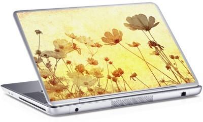 Λουλόυδια, Skins sticker, Αυτοκόλλητα Laptop