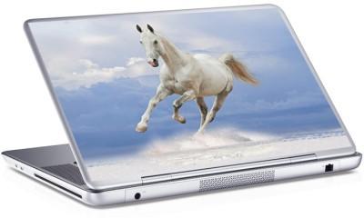 Άλογο, Skins sticker, Αυτοκόλλητα Laptop