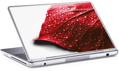Φύλλο, Skins sticker, Αυτοκόλλητα Laptop
