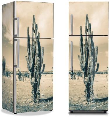 Κάκτος στην έρημο, Φύση, Αυτοκόλλητα ψυγείου