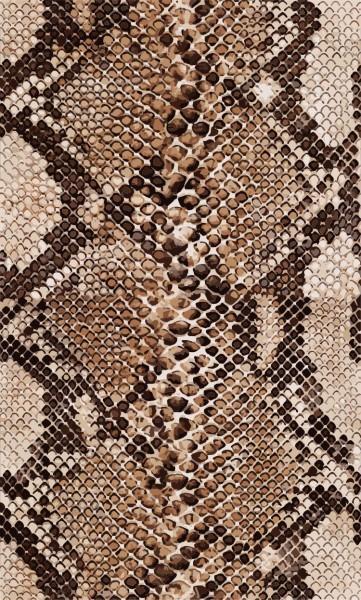 Καφέ φίδι