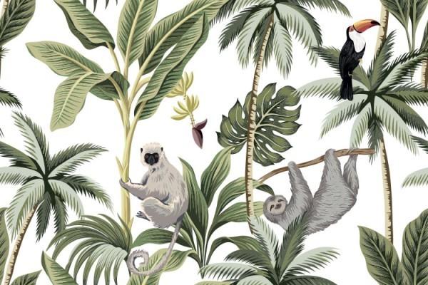Ζωάκια στα τροπικά δέντρα