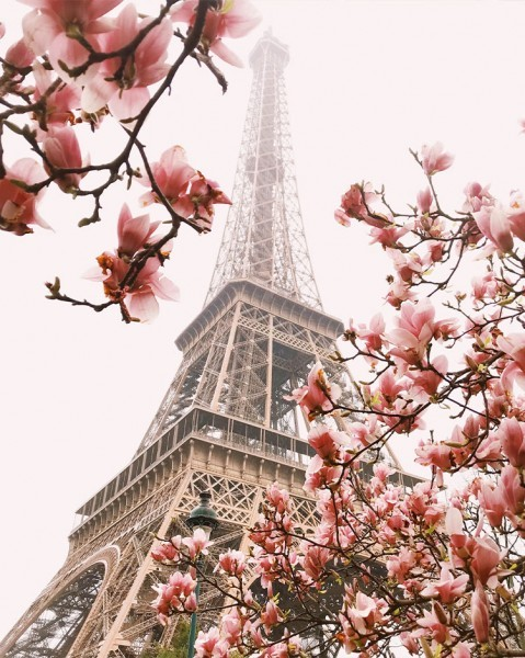 Αμυγδαλιές στο Παρίσι